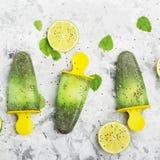 Het eigengemaakte vegetarische van de het fruitcitrusvrucht van de roomijsijslolly de pepermuntsap met chiazaden is verfraaid met Royalty-vrije Stock Afbeelding