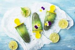 Het eigengemaakte vegetarische van de het fruitcitrusvrucht van de roomijsijslolly de pepermuntsap met chiazaden is verfraaid met Royalty-vrije Stock Foto's