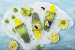 Het eigengemaakte vegetarische van de het fruitcitrusvrucht van de roomijsijslolly de pepermuntsap met chiazaden is verfraaid met Royalty-vrije Stock Afbeeldingen