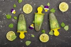 Het eigengemaakte vegetarische van de het fruitcitrusvrucht van de roomijsijslolly de pepermuntsap met chiazaden is verfraaid met Stock Foto