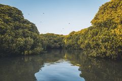 Het eiland dat beste zonsondergangmeningen geeft Stock Foto