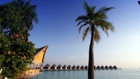 Het eiland met palmen en traditionele tropische hut stock footage