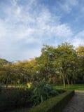 Het Eiland Natuurreservaat van Toronto royalty-vrije stock afbeeldingen
