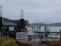 Het eiland Nieuw Zeeland van het noorden Stock Fotografie