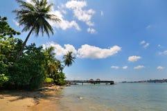 Het eiland Singapore van Ubin van Pulau Stock Foto's