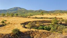 Het Eiland van bergentroodos Cyprus Stock Fotografie
