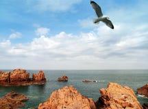 Het eiland van Bretagne van bréhat Stock Fotografie