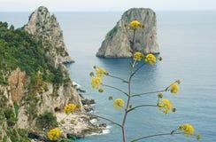 Het eiland van Capri royalty-vrije stock foto