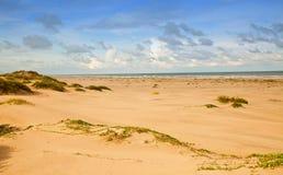 Het Eiland van de Aalmoezenier van het Zuiden van Sandunes stock afbeelding