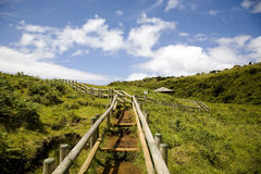 Het Eiland van de Azoren - Portugal Stock Afbeeldingen