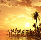 Het eiland van de droom stock foto's