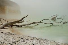 Het eiland van de kust van rügen Stock Foto's
