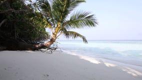 Het eiland van de Maldiven stock footage