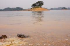 Het eiland van de rivier in het Westenmeer royalty-vrije stock foto