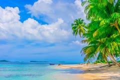 Het eiland van de woestijn met palmen Stock Foto
