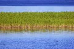Het eiland van de zegge Stock Afbeelding