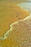 Het Eiland van Fraser, Australië stock foto's