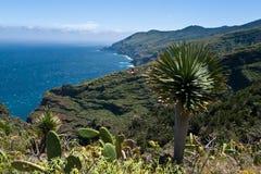 Het eiland van La Palma, de Atlantische Oceaan Stock Foto's