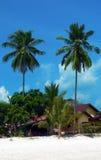 Het Eiland van Langkawi. Lange TweelingPalmen Royalty-vrije Stock Afbeelding