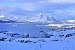 Het eiland van Lofoten Royalty-vrije Stock Foto