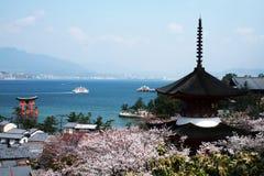 Het eiland van Miyajima Royalty-vrije Stock Foto's