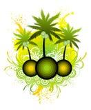 Het eiland van palmen & oceaannevel Stock Foto's