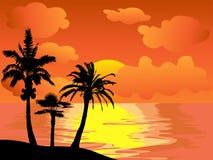 Het eiland van palmen bij zonsondergang Stock Fotografie