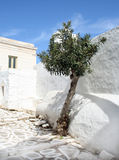 Het Eiland van Paros, Griekenland Stock Foto's