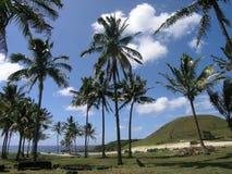Het Eiland van Pasen - strand Anakena Stock Afbeelding
