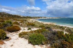 Het eiland van Rottnest in Australië Stock Foto