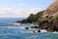 Het eiland van Rouzig Stock Fotografie