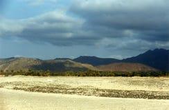 Het eiland van Soqotra Royalty-vrije Stock Foto