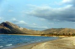 Het eiland van Soqotra Stock Afbeelding