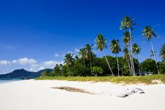 Het Eiland van Tabuan van de mens in Borneo Royalty-vrije Stock Afbeeldingen