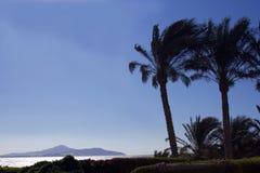 Het eiland van Tiran Stock Fotografie