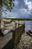 Het Eiland van Tristan Royalty-vrije Stock Foto's
