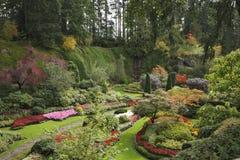 Het eiland Vancouver in Canada Stock Foto's