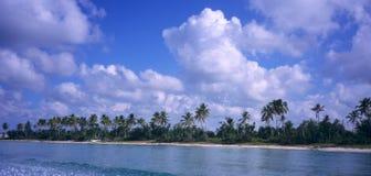 Het eilandkustlijn van Saona - Dominicaanse republiek Stock Fotografie