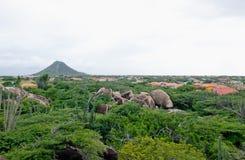 Het eilandlandschap van Aruba Royalty-vrije Stock Foto's