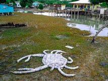 Het eilandlandschap van Maleisië stock foto's
