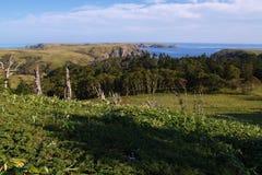 Het eilandlandschap van Shikotan Stock Afbeeldingen