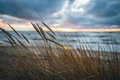 Het eind van gouden ons bij het strand Royalty-vrije Stock Foto