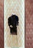 Het elegante jasje van de dameswinter stock afbeelding
