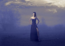 Het elegante Meisje van de Blonde in Zwarte Stock Afbeelding