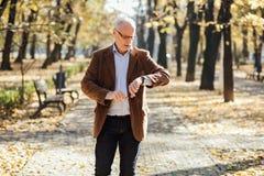 Het elegante oude mensen lopen Stock Foto