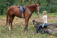 Het elegante vrouw stellen met bruin renpaard Stock Foto's