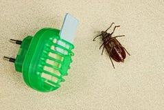 Het elektrische apparaat van de insectbescherming en bruine kever Stock Afbeelding
