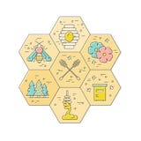 Het element van het honingsontwerp Royalty-vrije Stock Afbeeldingen