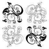 Het element van het ontwerp op een witte achtergrond Royalty-vrije Stock Afbeeldingen