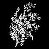 Het element van het ontwerp op een zwarte achtergrond vector illustratie